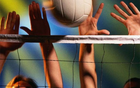 Bob Jones Volleyball: the Goals and the Team