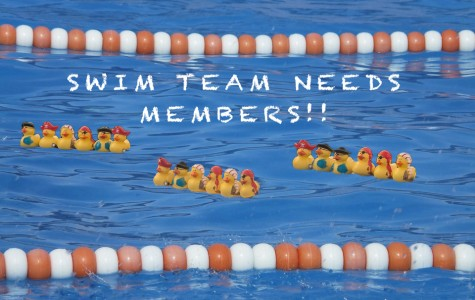 Swim Team: Trying Out for an Elite Team