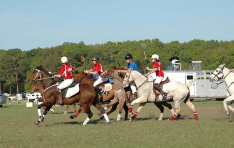 Polocrosse: It's Personal.