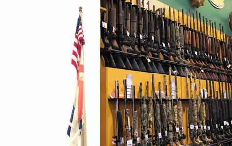 Navy Yard Shooting: Zero Hour for Gun Control?