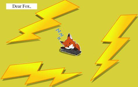 Dear Fox, Lightning Round