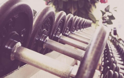 Exercise, Is It Actually Necessary?