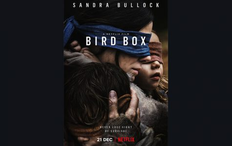 Bird Box? An Empty Box.
