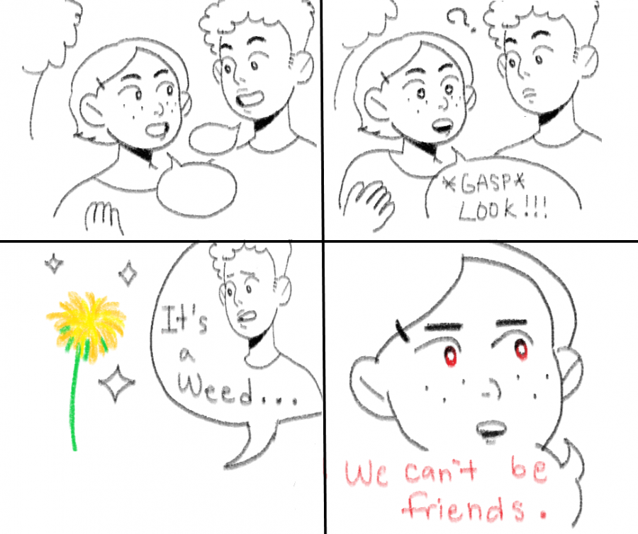 It's National Dandelion Day