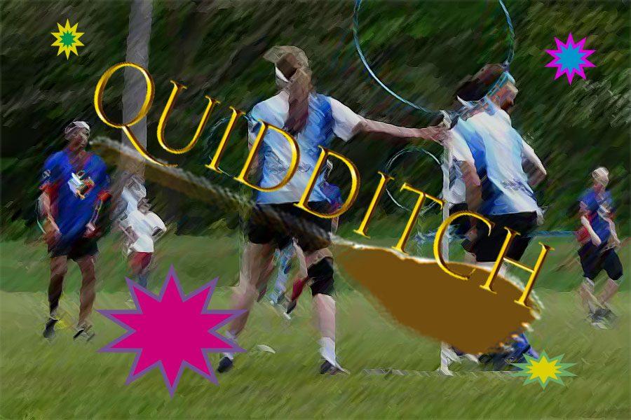 Why Bob Jones Needs a Quidditch Team