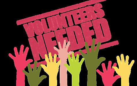 Summer Volunteering Opportunities