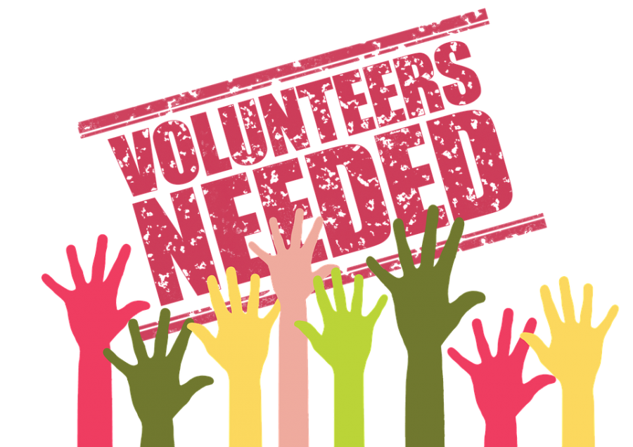 Summer Volunteering Opportunities