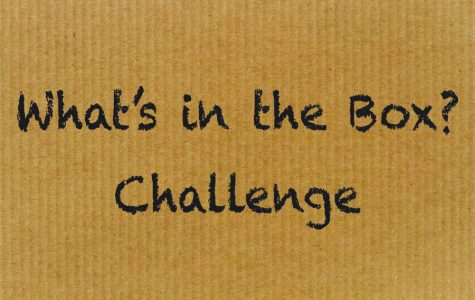 A Challenge: What's in the Box?