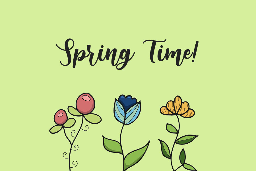 Spring Time Activities: Picnics and Farmers Markets
